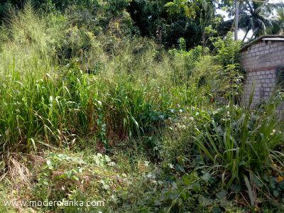 Commercial Land for Sale at Sandalankawa - Kurunegala