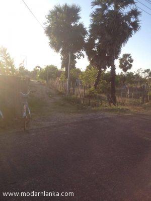 Bare Land for Sale at Batticaloa - Batticaloa
