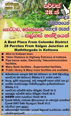 Coconut Land (Estate) for Sale at Kottawa - Colombo