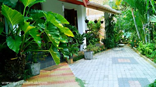 3 Bed Room House for Sale at Ampitiya - Kandy