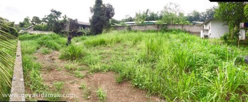 Bare Land for Sale at Hanwella - Colombo