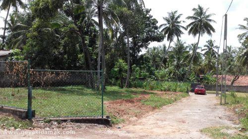 Bare Land for Sale at Kandana - Gampaha