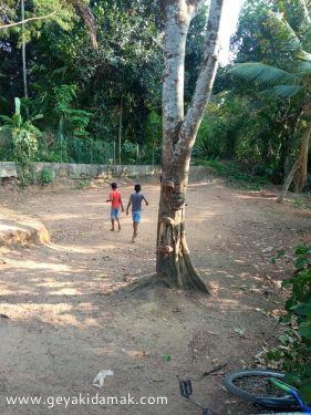 Bare Land for Sale at Kirillawala - Gampaha
