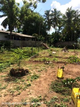 Commercial Land for Sale at Minuwangoda - Gampaha