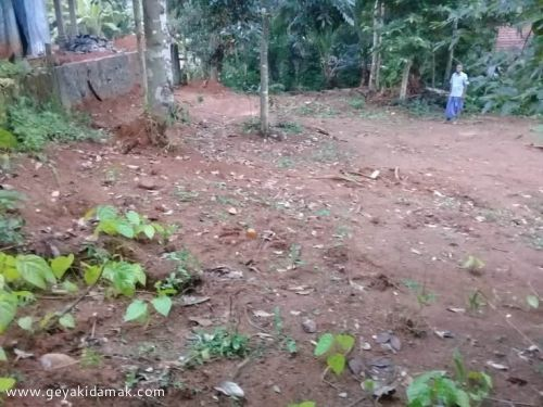 Bare Land for Sale at Mirigama - Gampaha
