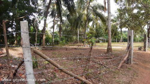 Bare Land for Sale at Weliveriya - Gampaha