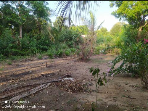 Bare Land for Sale at Tissamaharama - Hambantota