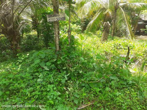 Bare Land for Sale at Bandaragama - Kalutara
