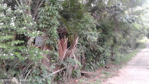 Industrial Land for Sale at Dodangoda - Kalutara