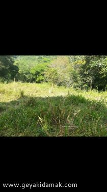Bare Land for Sale at Kadugannawa - Kandy