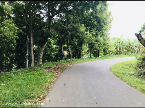Bare Land for Sale at Pilimatalawa - Kandy