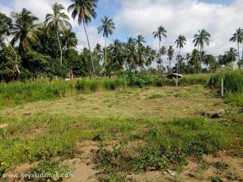 Bare Land for Sale at lbbagamuwa - Kurunegala