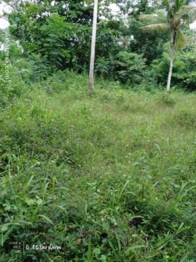 Bare Land for Sale at Kekanadurra - Matara