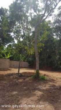 Commercial Land for Lease at Weligama - Matara