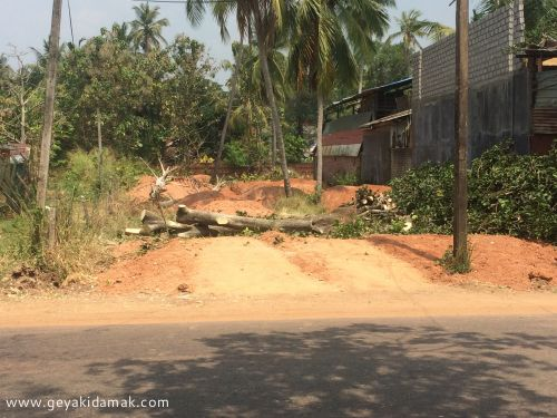 Commercial Land for Sale at Dankotuwa - Puttalam